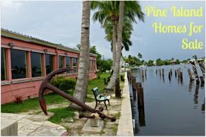 Pine Island Homes