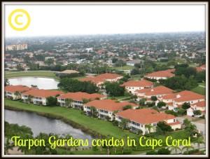 Tarpon Gardens condos