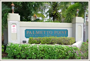 Palmetto Point Homes for sale
